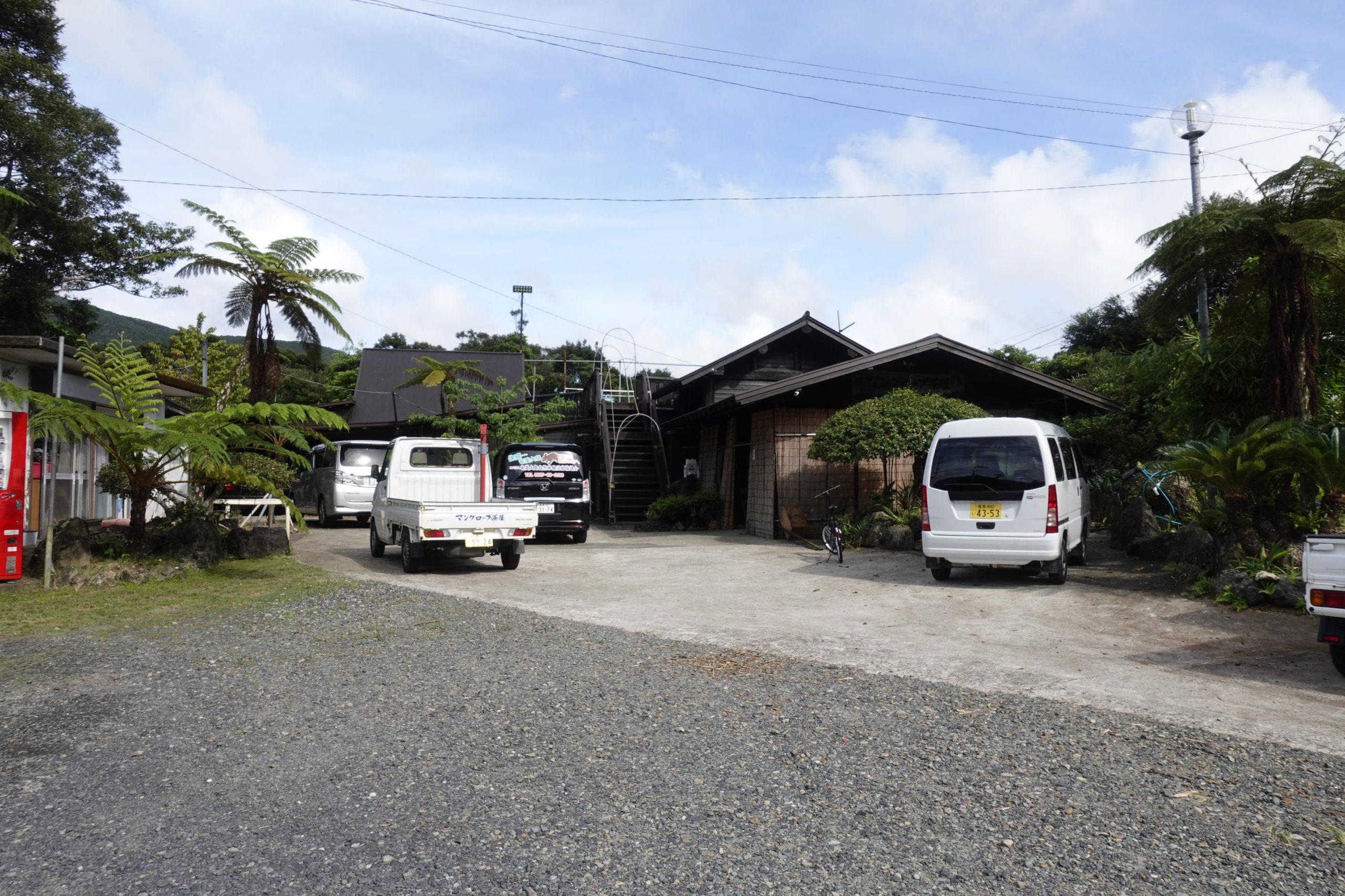 奄美大島観光マングローブ15