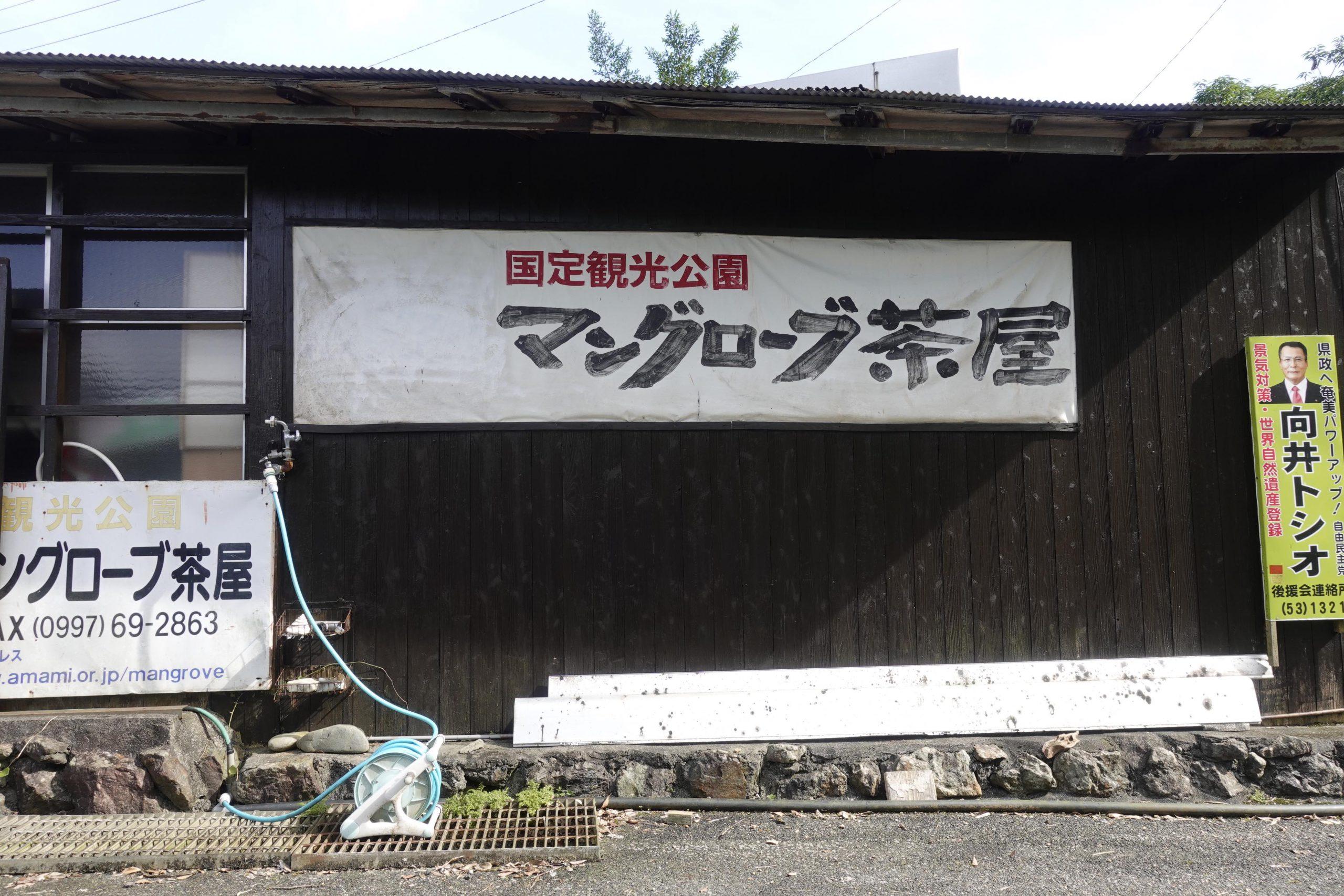 奄美大島観光マングローブ14