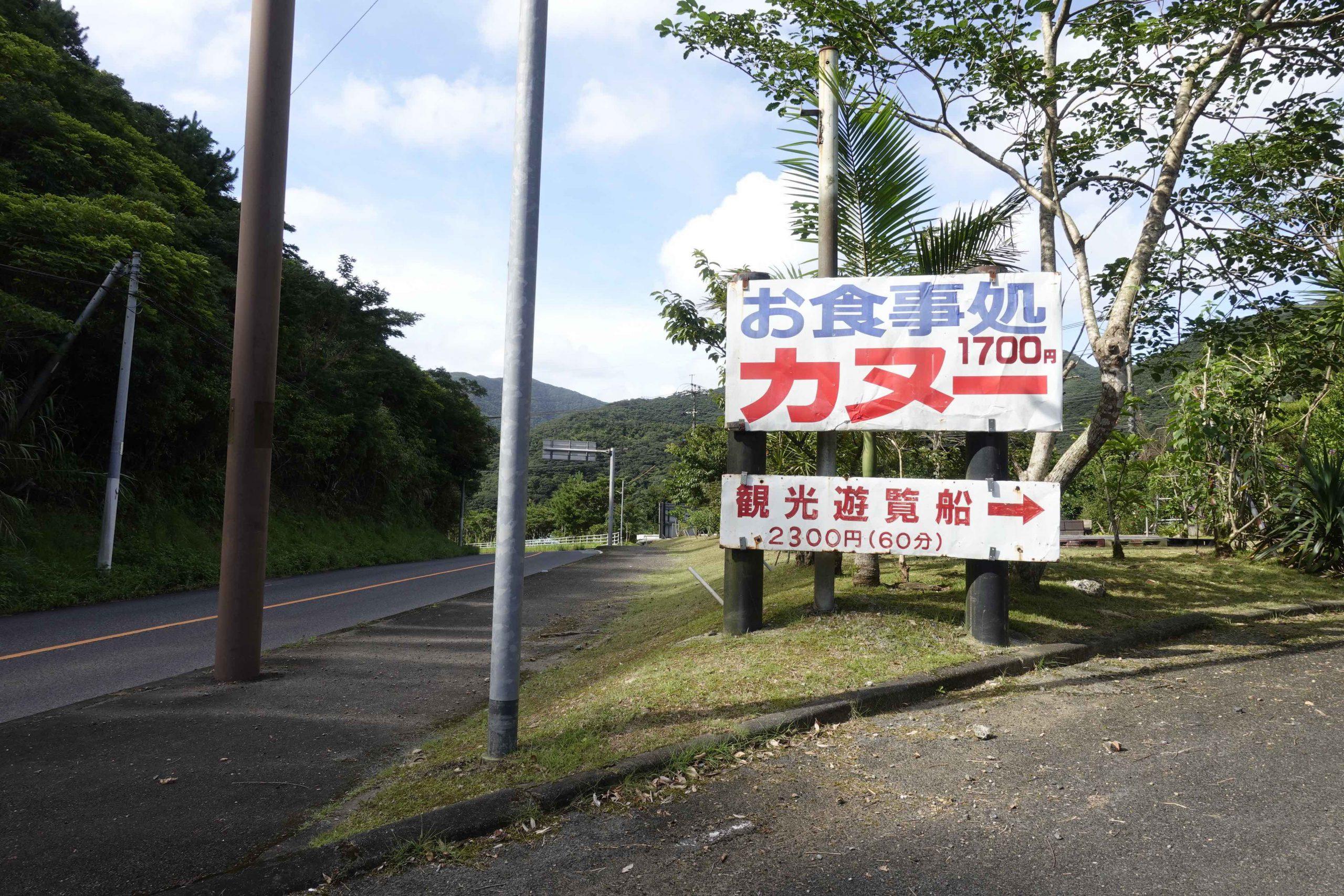 奄美大島観光マングローブ13